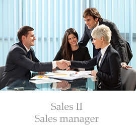 Sales II – Sales manager